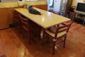 Abitazione a Venezia, tavolo cucina in frassino, Arch. Franca Semi 7